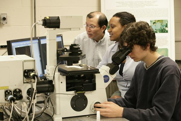 Professor Ou-Yang and students manipulating cell organelles with laser tweezers